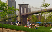 brooklyn bridge park hra